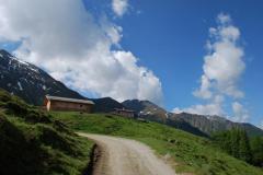 alprechtalmlauf2008-002