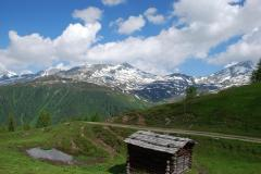 alprechtalmlauf2008-003