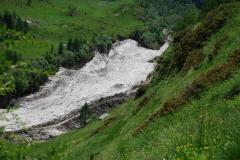alprechtalmlauf2008-268