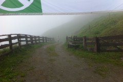 alprechtalm2011-064