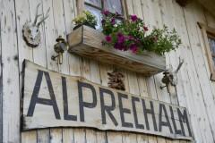 alprechtalm2013-192