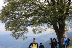 gaisinger-berglauf-2016-0304