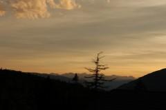 gais-2012-362.jpg