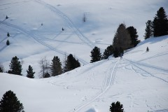 skialprace-ahrntal-2012-2-038
