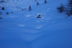 skialp2014-009