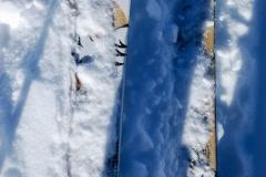 skialp2014-295